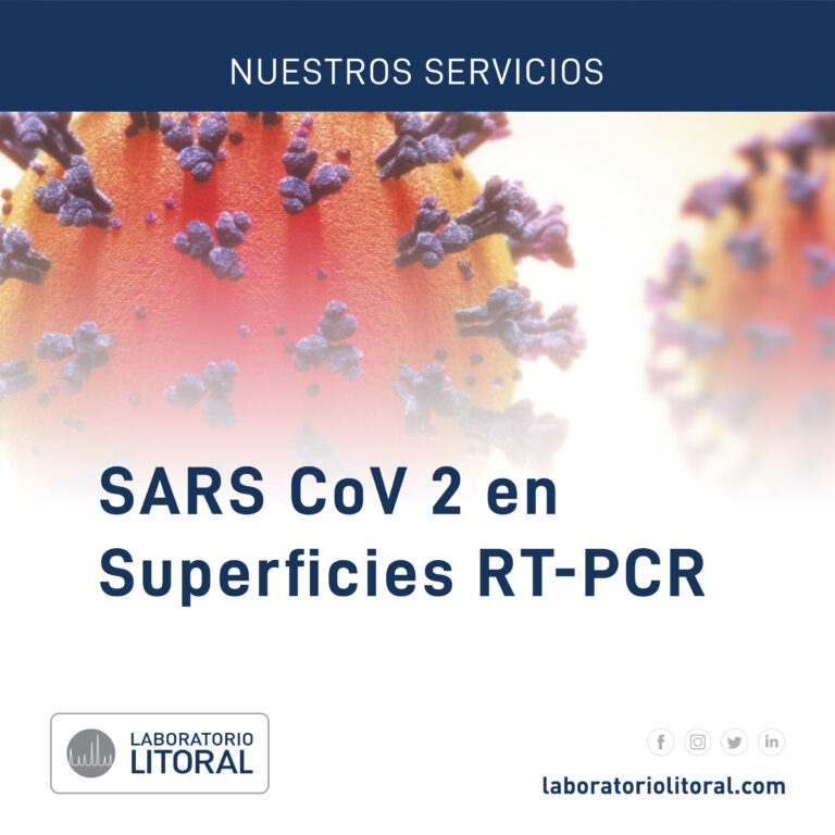 SARS CoV 2 en Superficies