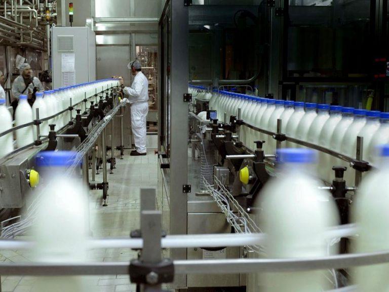 Día del Trabajador de la Industria Láctea